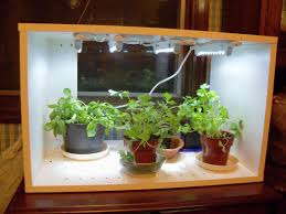 Hydroponic Kitchen Herb Garden Herb Planter Indoor Herbs Growing On Windowsill Thyme Rosemary