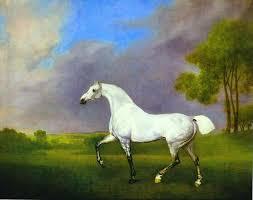 george stubbs a grey horse