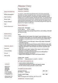 Social Media Resume Templates Resume Template