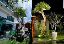 Small Picture Malaysia garden design