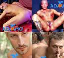 Annunci gay livorno centro massaggi gay milano