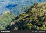 imagem de Montenegro Rio Grande do Sul n-17