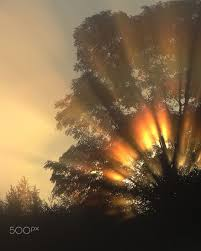 divine lighting. Divine Light By ~ REgiNA (Lithuania) Lighting D