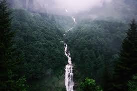 Behang Waterval Bomen Mist Hd Breedbeeld High Definition Fullscreen