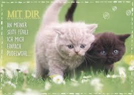 Postkarte Sprüche Liebe Mit Dir An Meiner Seite Freundschafts