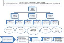 C Organization Chart Organizational Chart And Time Line For Vail Ebqi Pact