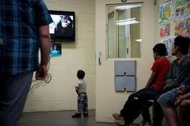 Image result for pic of immigration judges in us courts