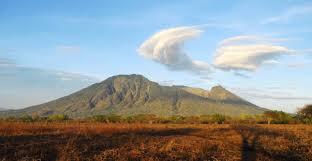Image result for taman nasional baluran banyuwangi