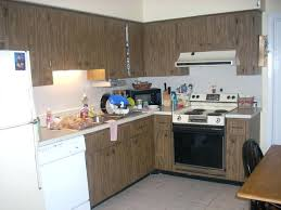 Should I Paint My Kitchen Cabinets White Best Inspiration Ideas