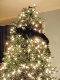 Black CatChristmas Tree Ornamenttree DecorationCat Themed Christmas Tree