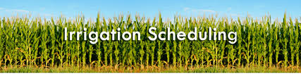 Irrigation Scheduling Sherburne Soil And Water Conservation District
