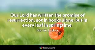 Martin Luther Quotes Unique Martin Luther Quotes BrainyQuote