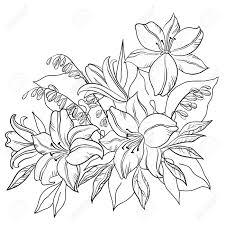 花と葉のユリと私ベクトル白黒輪郭