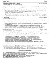 financial executive resume sample resume exampl cfo resume vp finance resume vp finance resume