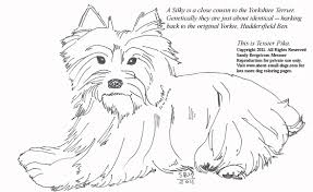 Small Picture Terrier Puppy Coloring Pages Coloring Coloring Pages