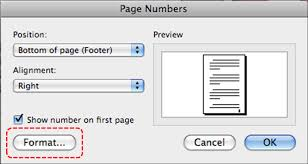 image demonstrates location of format on in page numbers dialog