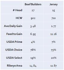 Jersey Calf Weight Chart Beef Genetics Make Jersey Bull Calves 10 Times As Profitable