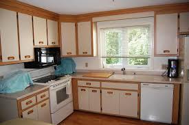image of refinishing oak kitchen cabinets ideas