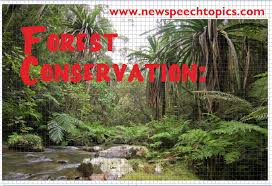 need for conservation of forests preservation impacts of deforestation conservation of forests