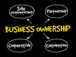 Business Ownership Types Business Entity Formation Types