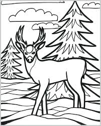 Veterinarian Coloring Pages Printable Veterinarian Coloring Pages