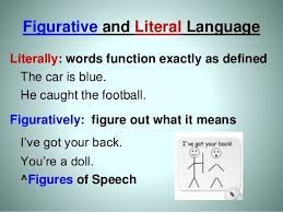 literal language figurative and literal language literally words function