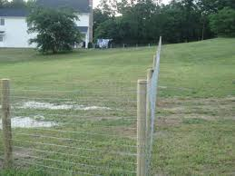 welded wire fence gate. Welded Wire Fencing Fence Gate