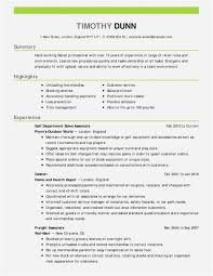 Free Resume Examples For Customer Service Simple Resume Template