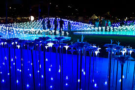 wander through honolulu s magical new light garden at victoria ward park
