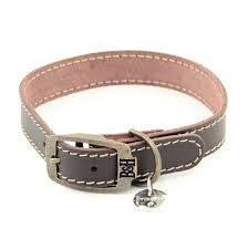 bailey and hound stitched leather large dog collar with round brass dog tag