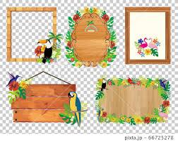 tropical frame image ilration