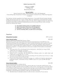 Internal Audit Resume Unique Internal Auditor Sample Resume