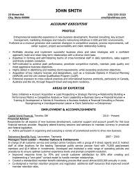 ... sales account executive resume sample ...