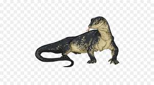 Image result for free blog pics of Water Monitor Lizards