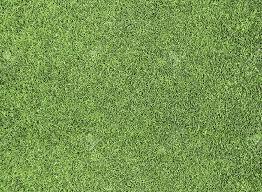 fake grass. Wonderful Grass Golfgreenfakegrass2 On Fake Grass