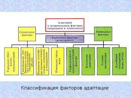 Реферат Адаптация паразитов ru Банк рефератов  ОКЕАНИЧЕСКИЕ ТЕЧЕНИЯ