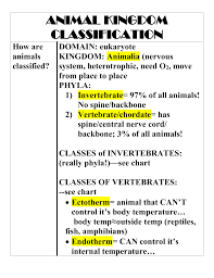 Vertebrate Phyla Chart How Are Animals Classified