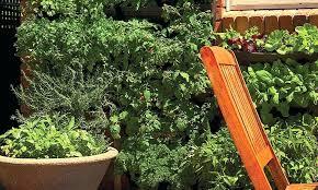 diy vertical garden wall natural better plant growth diy vertical vegetable garden wall