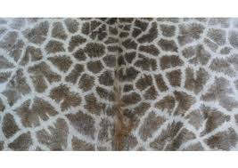 real giraffe skin rug genuine giraffe hide from south africa