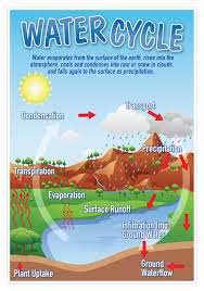Water Cycle Smart Chart Top Notch Teacher Products Inc