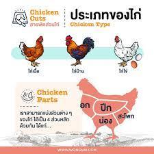 """วิธีเลือก """"เนื้อไก่"""" ส่วนไหนเหมาะทำเมนูอะไรบ้าง ? - Wongnai"""