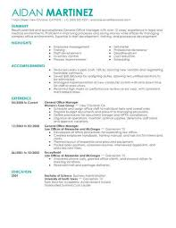 Best Administrative General Manager Resume Example From Professional