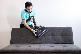 sofa dust mite cleaning and sanitizing