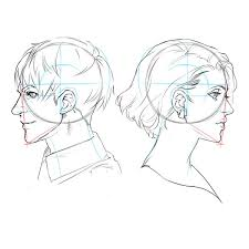 基本から徹底解説 正面顔と横顔の描き方 いちあっぷ