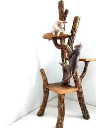 cool homemade cat trees cat climber indoor cat tree furniture best cat climbing tree ideas on cool homemade cat trees