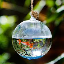 Decorative Fish Bowls Diameter = 1000cm 100cm 100cm Glass Terrarium Aquarium Hanging Glass 55