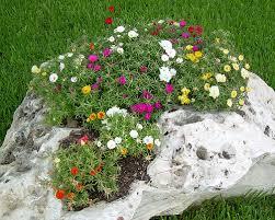 Idee Per Abbellire Il Giardino : Pietre per aiuole giardino rocciosi consigli utili su