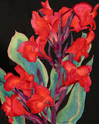 red canna lilies on black watercolor painting beautiful dramatic fl fine art giclee print