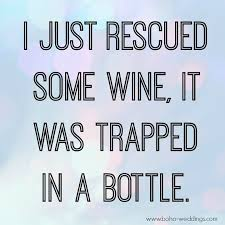 Wine Quotes Gorgeous 48 Happiness Project 48 Quote 48 Funny Stuff Pinterest