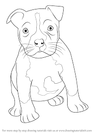 Small Picture Learn How to Draw a Pitbull puppy Other Animals Step by Step